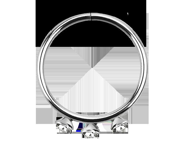 silver septum rings